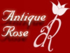 Antique Rose Flower Shop