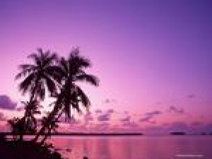 Destination Weddings & Honeymoon Travel Consultant
