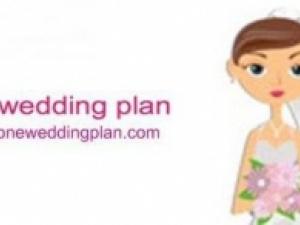 one wedding plan