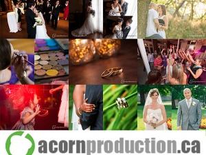 acornproduction.ca